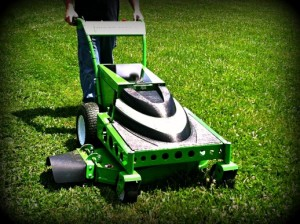 Professional Mowing & Landscaping Jackson, MS